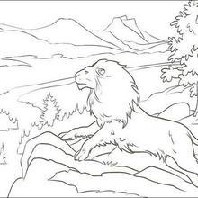 O Leão Aslan