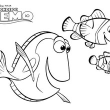 Marin, Dory e Nemo