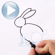 Desenhar um coelho