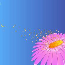 Flor e pólen