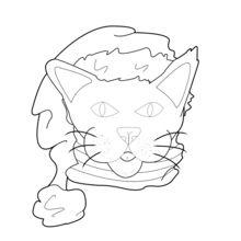 Gato vestido para o Nat