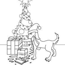 Cão com presentes