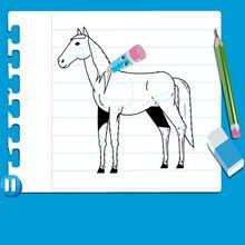 Video de como desenhar um CAVALO