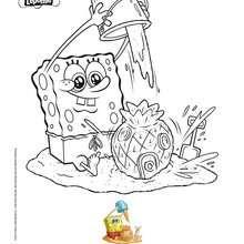 Bob Esponja colorir para a prai