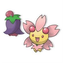 Desenho do pokémon Cherrim para colorir