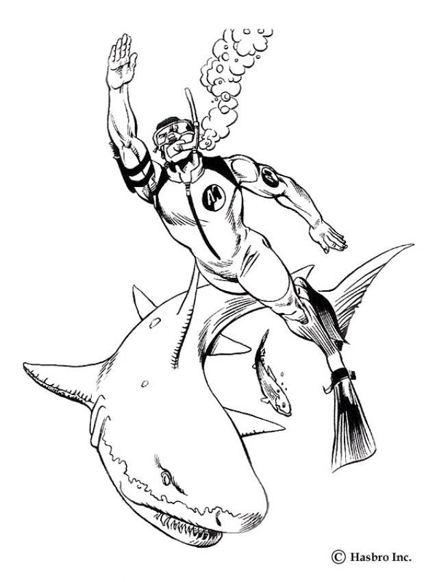 tubarão desenhos para colorir desenhos para crianças jogos