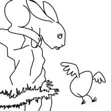 Do coelhinho da Páscoa voando