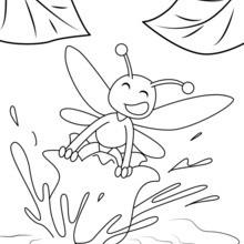 Abelha na flor de lírio