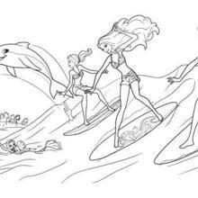 Os surfistas e Zuma