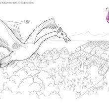Swans Ballet coloração