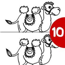 Jogo dos 10 erros : CAMELO
