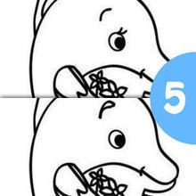 Jogo dos 5 erros : golfinho