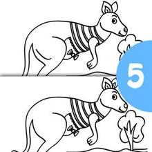 Jogo dos 5 erros : KANGURU