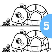 Jogo dos 5 erros : TARTARUGA