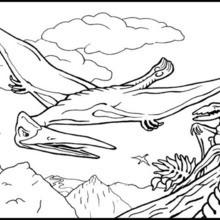 Desenho para colorir de um Réptil voador