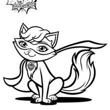 O gato de Kara