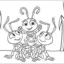 Pirâmide de formigas