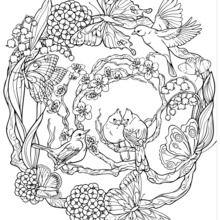 Mandala com padrões naturais