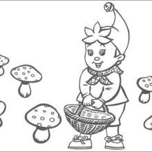 Desenhos Para Colorir De Colorindo Noddy Colhendo Cogumelos