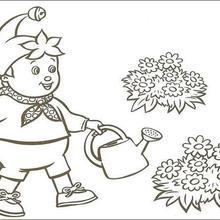 Desenhos Para Colorir De Noddy Regando As Flores Para