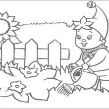 Noddy regando seu jardim para colorir