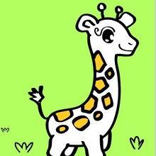 Desenhos para colorir para crianças PRÉ-ESCOLARES