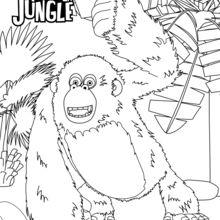 Miguel, o gorila