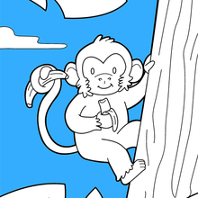 Macaco Desenhos Para Colorir Desenhos Para Criancas Jogos