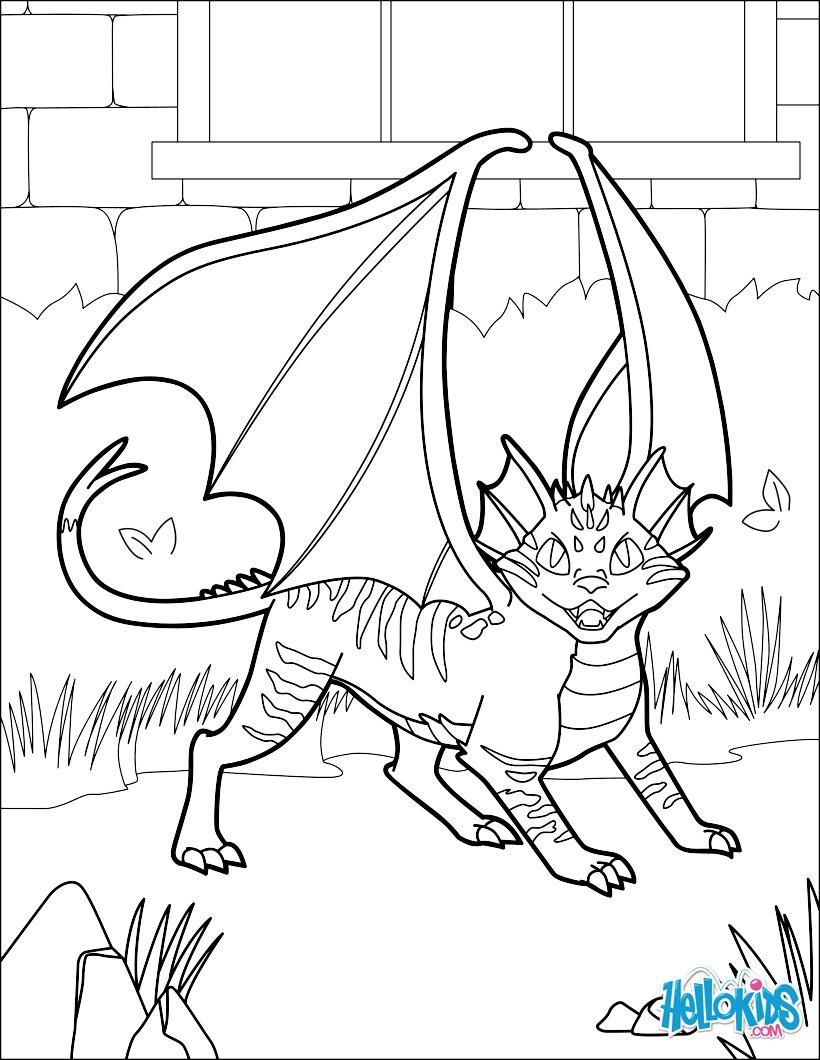 Gato Dragão