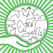 Desenhos Para Colorir De Dia Mundial Dos Animais Pt Hellokids Com