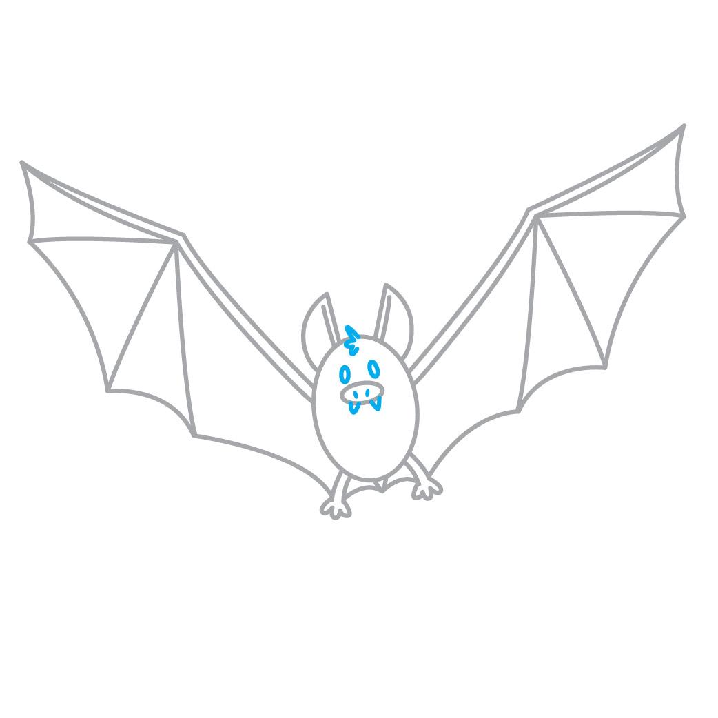 O Morcego