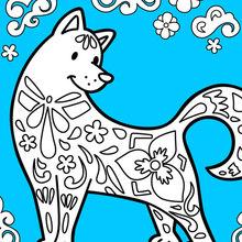 O cão comemora o Ano Novo Chinês