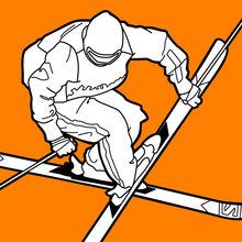 Esqui estilo livre nos Jogos Olímpicos